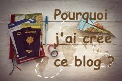 pourquoi j'ai créé ce blog ?