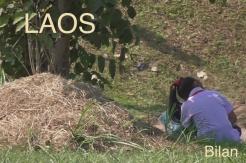 Laos bilan